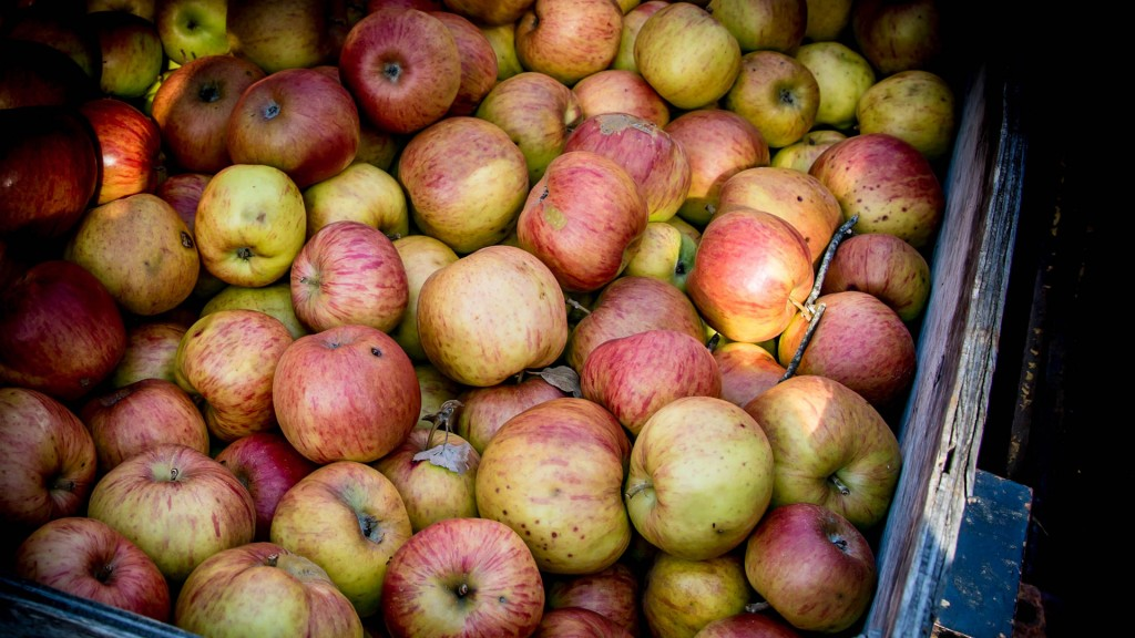 DH-images_0014_apples-crate